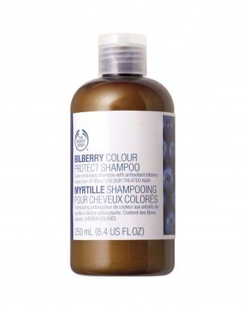 6-bodyshopbilberryshampoo-12957677.jpg