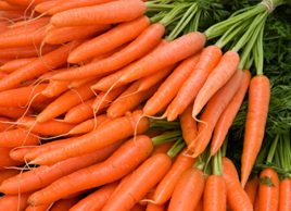 Carrots with Character