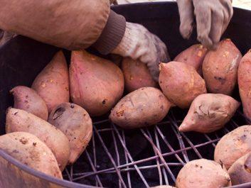 baked yams sweet potatoes