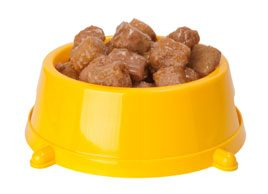The pros and cons of homemade pet food