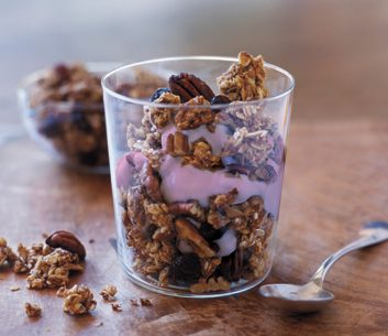 Berry Granola Fool   granola recipes
