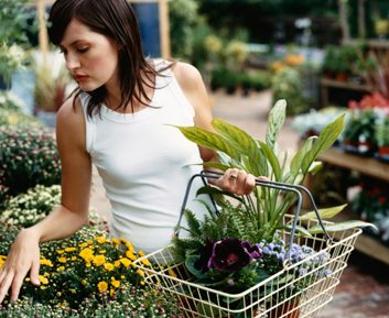 garden woman gardening