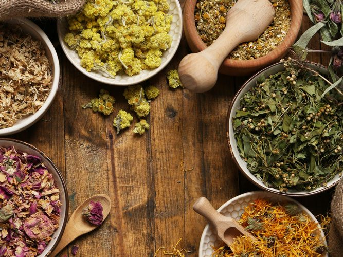 Reseach about the effects of herbal remedy has increase significantly.