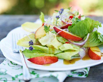 nectarine salad 353