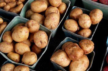 farmers market potatoes