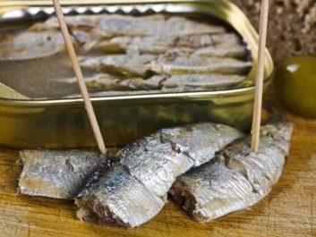 sardines-80443812.jpg
