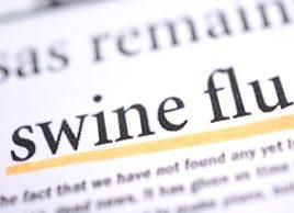 Swine flu FAQ