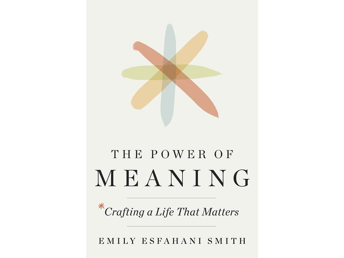 The Power of Meaning book