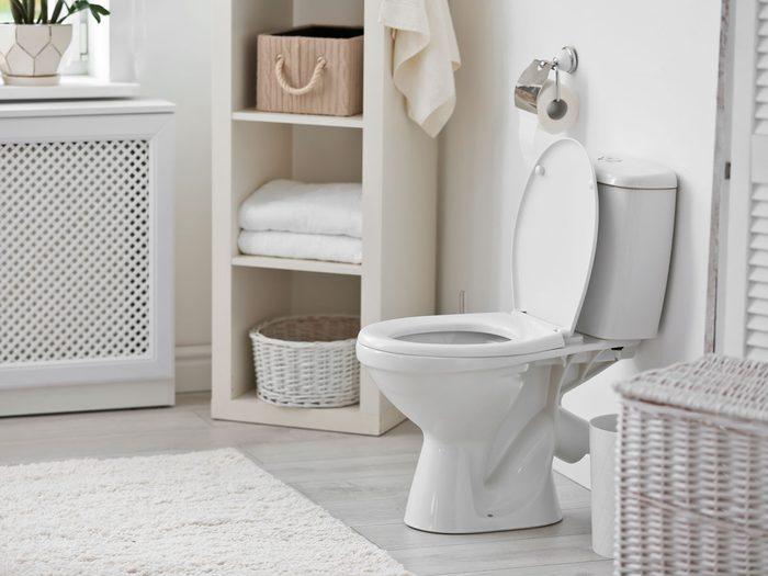 endometriosis symptoms   toilet