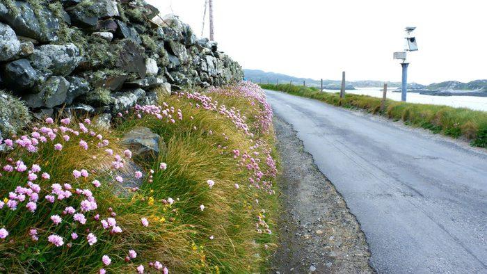 Walking Ireland Inishbofin hiking