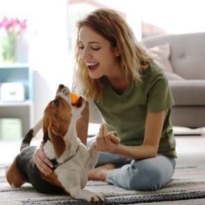 <h4></noscript>Why You Should Adopt an Older Dog</h4>