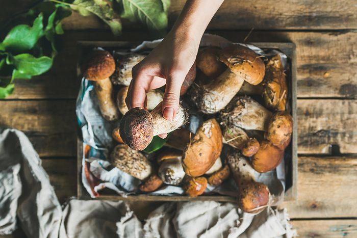 Boost your immunity naturally   Mushrooms