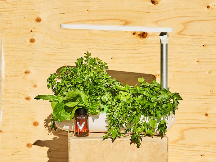 Eco Friendly Goods Vege Home